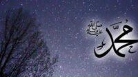 Nabi Muhammad SAW New